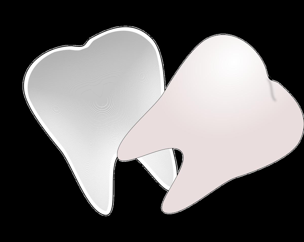 Prześliczne zdrowe zęby także niesamowity prześliczny uśmiech to powód do dumy.